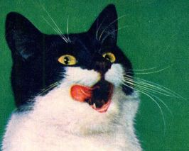 This cat with its amazing, lip-licking tongue is from a Whiskas advert of 1964